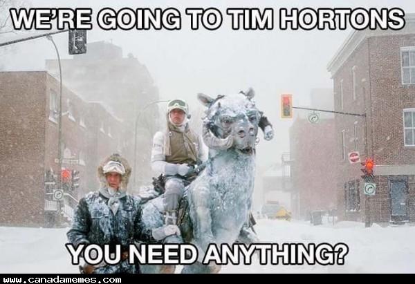 Ermahgerd Dog Canada Memes - Your da...